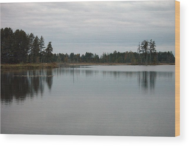 Nature Wood Print featuring the photograph Water's Calm by Linda Kerkau