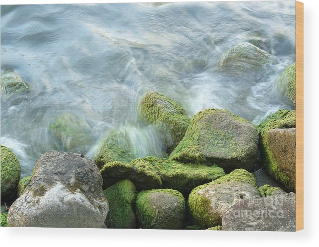 Illinois Wood Print featuring the photograph Waves On Mossy Rocks by Deborah Smolinske