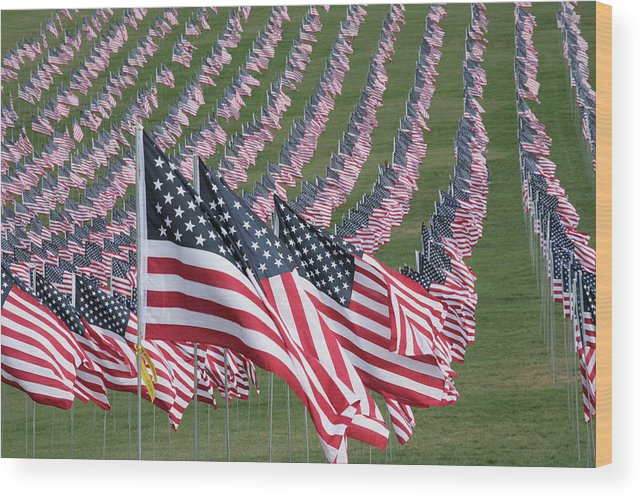9-11 Wood Print featuring the photograph We Will Never Forget by Harold Rau