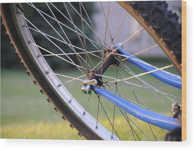Bicycle Wheel Bike Tire Wood Print featuring the photograph Wheeling by Susie Rieple