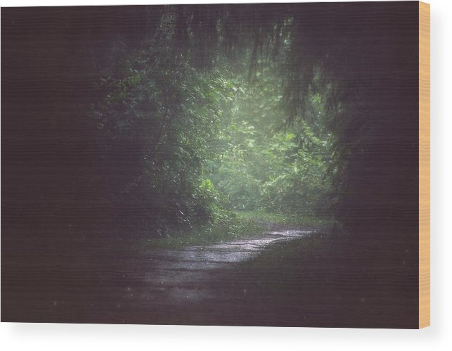 Wherever The Path May Lead Wood Print featuring the photograph Wherever The Path May Lead by Carrie Ann Grippo-Pike