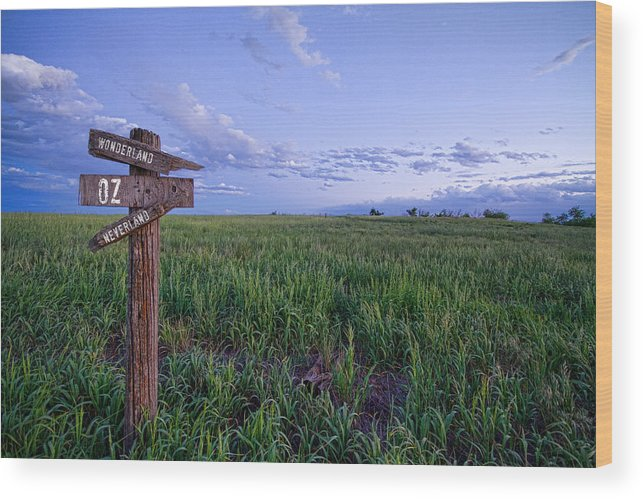 Country Wood Print featuring the photograph Which Way To Go by James BO Insogna