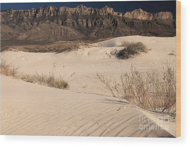 Guadalupe Mountains National Park Wood Print featuring the photograph White Sand Below by Adam Jewell