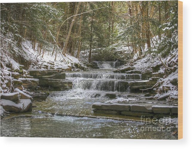 Winter Wood Print featuring the photograph Winter Brook by Steve Ratliff