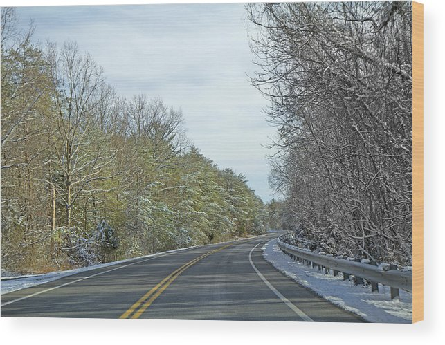 Country Wood Print featuring the photograph Winter Cruise by Betsy Knapp