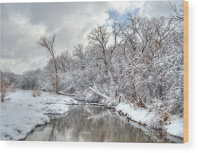 Winter Wood Print featuring the photograph Winter In The Heartland 9 by Deborah Smolinske