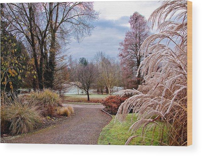 Winter Wood Print featuring the photograph Winter Nature by Nataliya Pergaeva