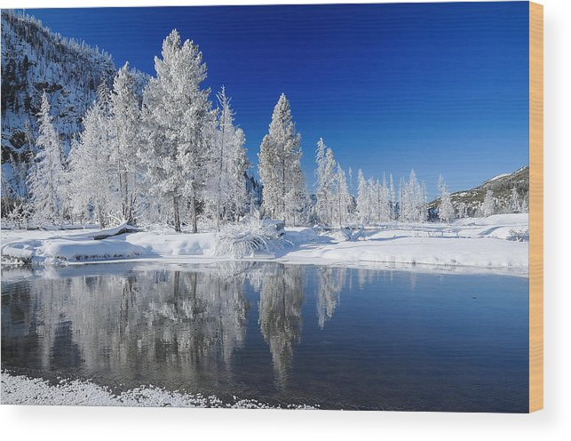 Yellowstone Wood Print featuring the photograph Winter's Chill by Jim Southwell