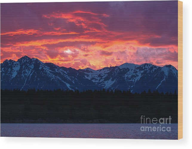 Wyoming Wood Print featuring the photograph Yellowstone Beauty by Susie Hoffpauir