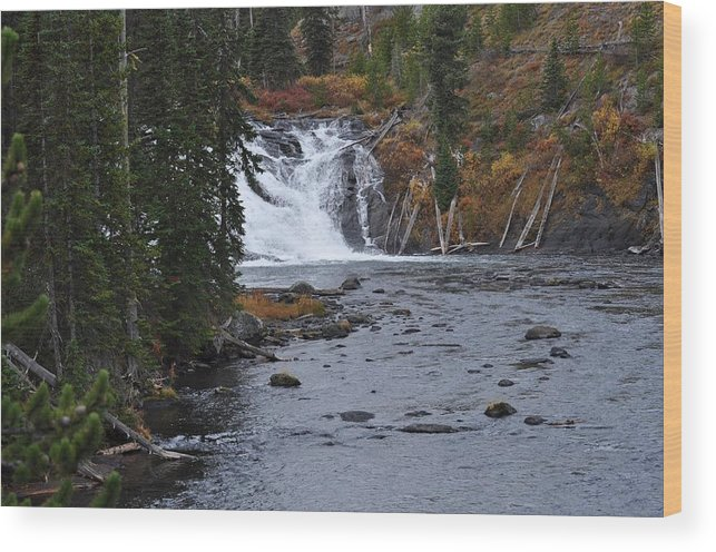 Yellowstone Wood Print featuring the painting Yellowstone Falls by Teresa Howell