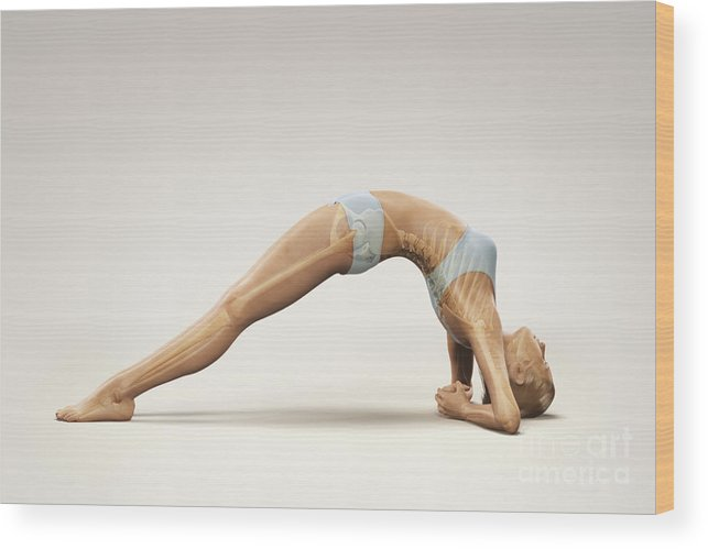 Transparent Wood Print featuring the photograph Yoga Upward Facing Two-foot Staff Pose by Science Picture Co