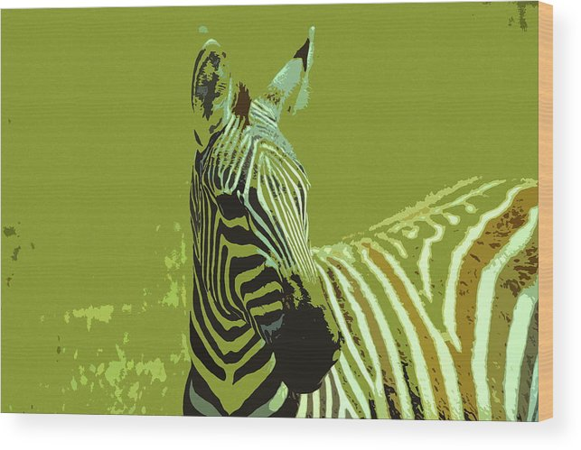 Kenya Wood Print featuring the digital art Zebra by Ronald Jansen