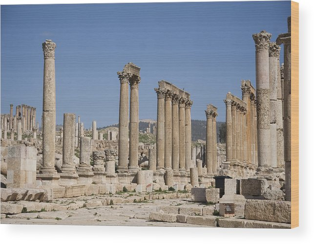 Columns Wood Print featuring the photograph The Oval Plaza In The Ruins by Taylor S. Kennedy
