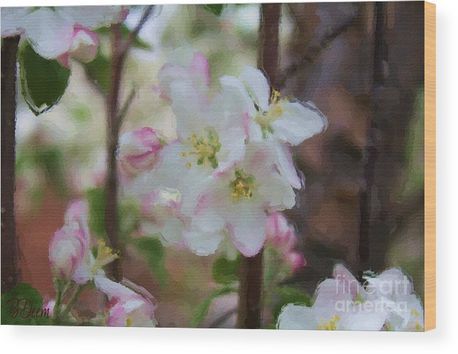 Blooms Wood Print featuring the painting Apple Blossoms by Brenda Deem