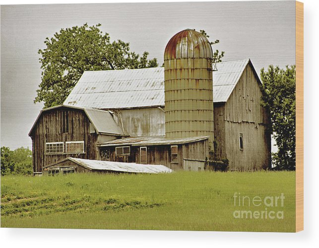 Barn Wood Print featuring the photograph Better Days 2 by Denise Wilkins