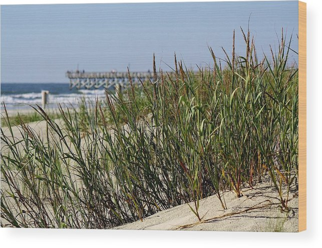 Sand Dunes Wood Print featuring the photograph Sand Dunes by Paulette Thomas