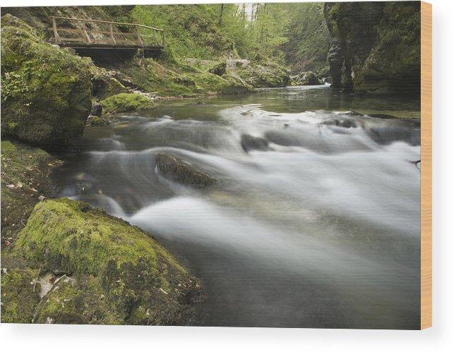Soteska Wood Print featuring the photograph The Soteska Vintgar Gorge by Ian Middleton