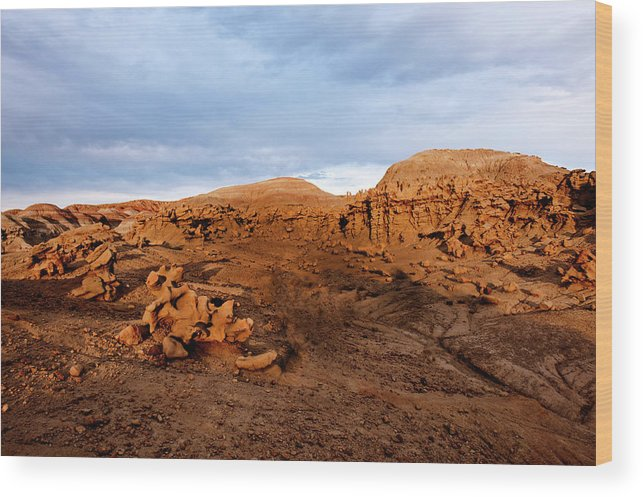 Dinosaur National Park Wood Print featuring the photograph Fantasy Canyon by Larry Gohl