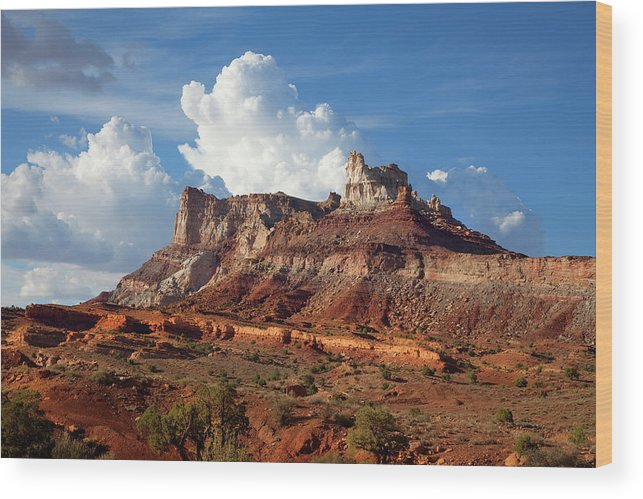 Southern Utah Wood Print featuring the photograph San Rafal Swell by Southern Utah Photography