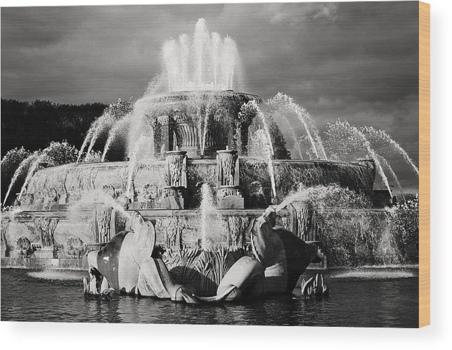 Black And White Wood Print featuring the photograph Buckingham Fountain by Laura Kinker