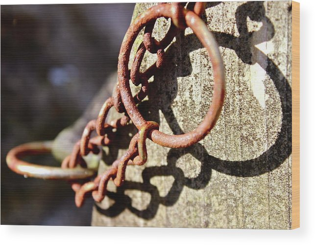 Lock Key Rustic Rusty Sunny Gateway Bridge Bench Wood Print featuring the photograph The Key by Noah Wright