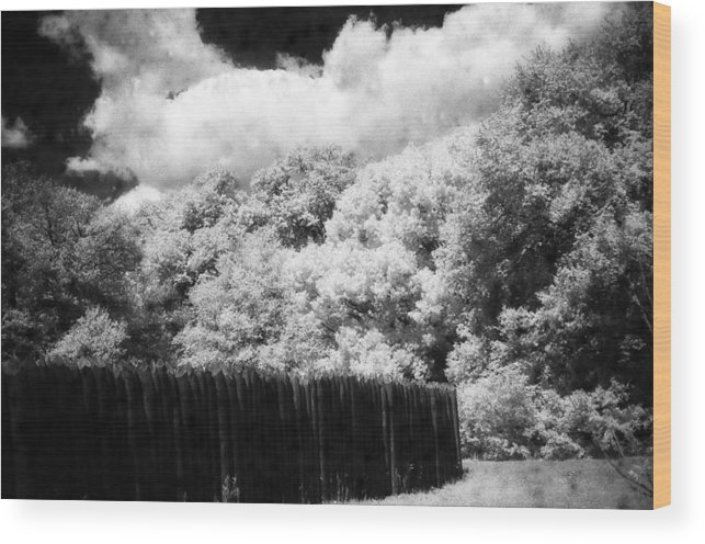 Landscape Wood Print featuring the photograph Boundaries by Jean Wolfrum