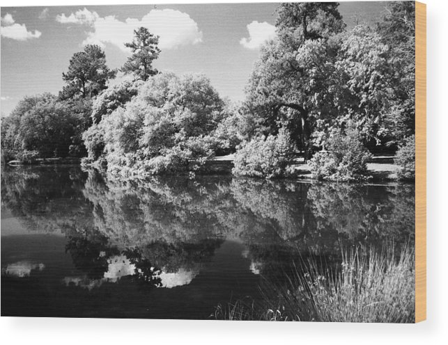 Landscape Wood Print featuring the photograph Reflection by Jean Wolfrum