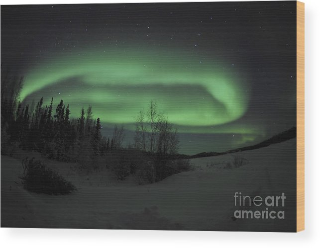 Yellowknife Wood Print featuring the photograph Aurora Borealis Over Vee Lake by Jiri Hermann