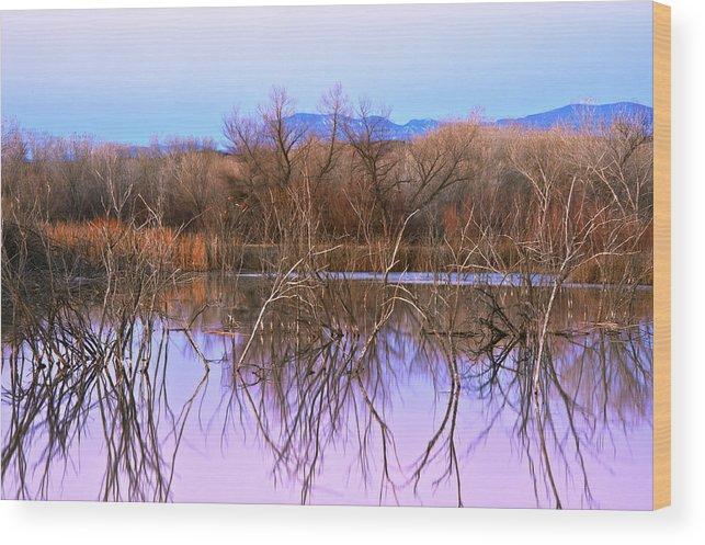Landscape Wood Print featuring the photograph Bosque Del Apache by Larry Gohl