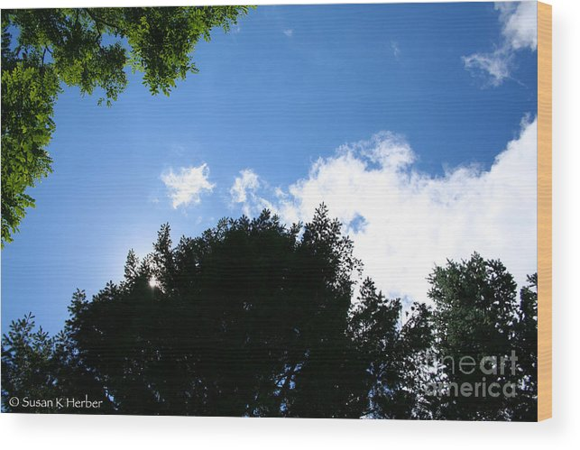 Blue Wood Print featuring the photograph Above The Trees by Susan Herber
