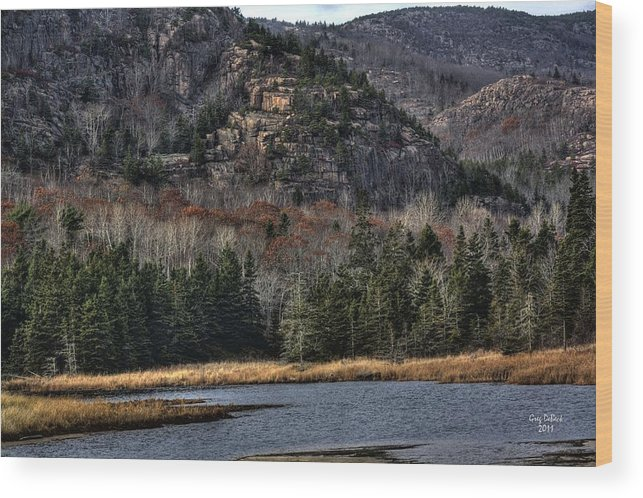 Hdr Wood Print featuring the photograph Acadia by Greg DeBeck