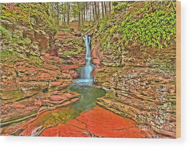 Ricketts Glen Wood Print featuring the photograph Adams Falls by Adam Jewell