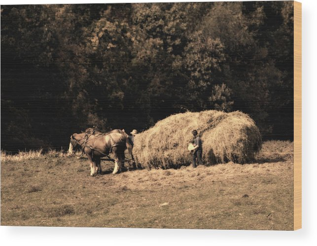 Amish Wood Print featuring the photograph Amish Hay Wagon by Tom Mc Nemar