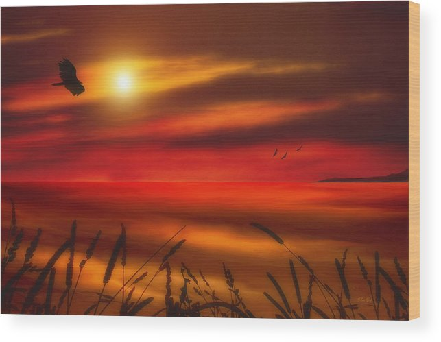 Sunset Wood Print featuring the photograph August Sunset by Tom York Images