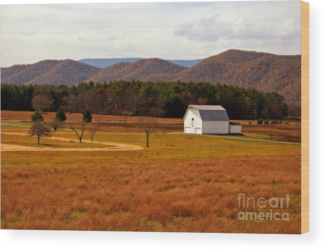 Barn Wood Print featuring the photograph Autumn Barn In Green Bank Wv by Kathleen K Parker
