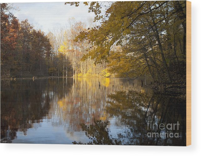 Chikaming Wood Print featuring the photograph Autumn Pond In Harbor Country by Christopher Purcell