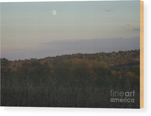 Autumn Wood Print featuring the photograph Autumn's Harvest Under The Moon by Tom Luca