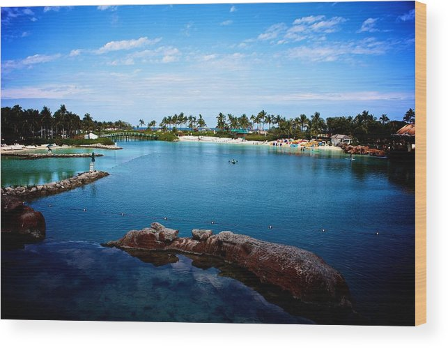 Bahamas Wood Print featuring the photograph Bahamas by Michael Albright