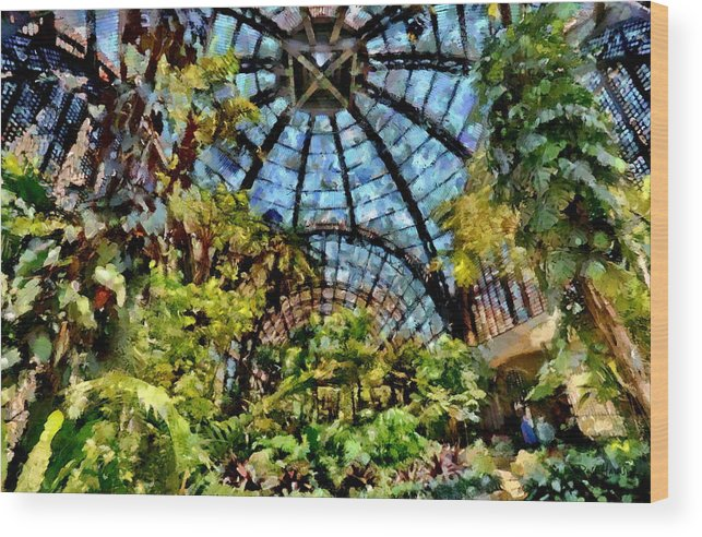 Balboa Park Wood Print featuring the photograph Balboa Park Botanical Gardens by Russ Harris