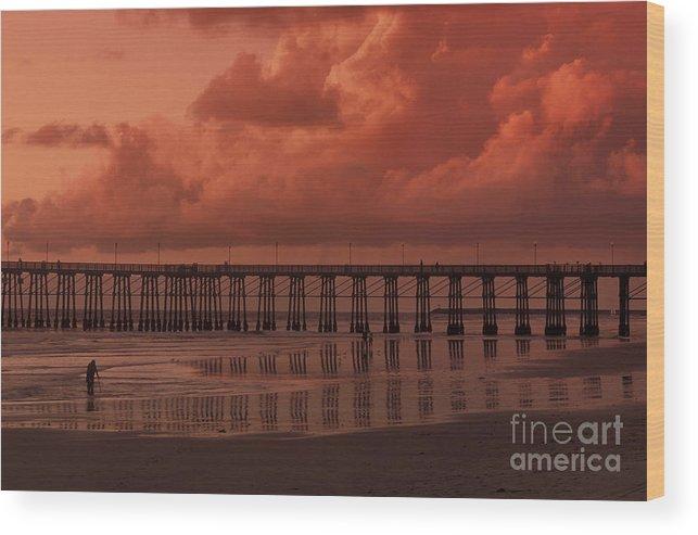 Sandra Bronstein Wood Print featuring the photograph Beachcombing At Oceanside Pier by Sandra Bronstein