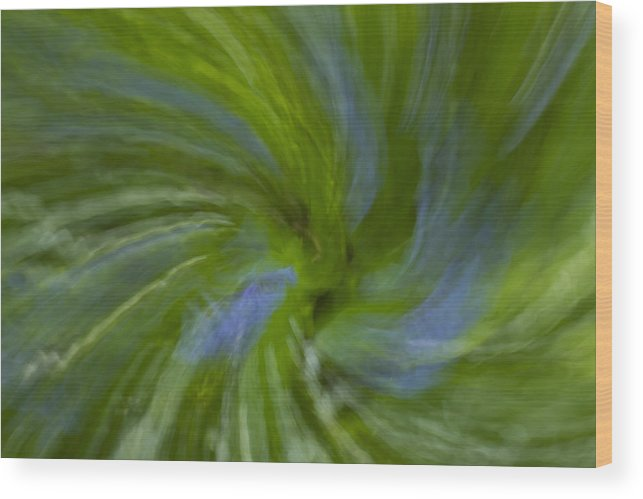 Bluebell Wood Print featuring the photograph Blue Bells Vortex 4 by John Brueske