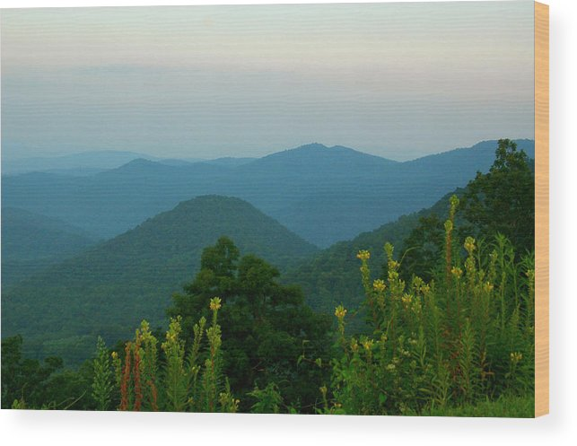 Landscape Wood Print featuring the photograph Blue Ridge View by Karri Ann Moore