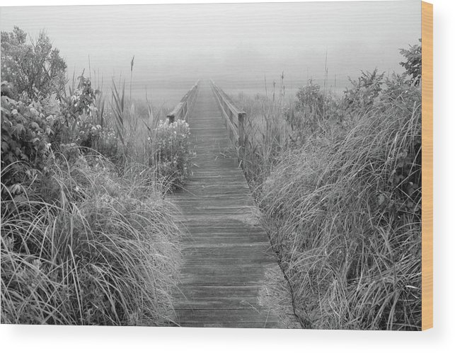 Quogue Wildlife Preserve Wood Print featuring the photograph Boardwalk In Quogue Wildlife Preserve by Rick Berk