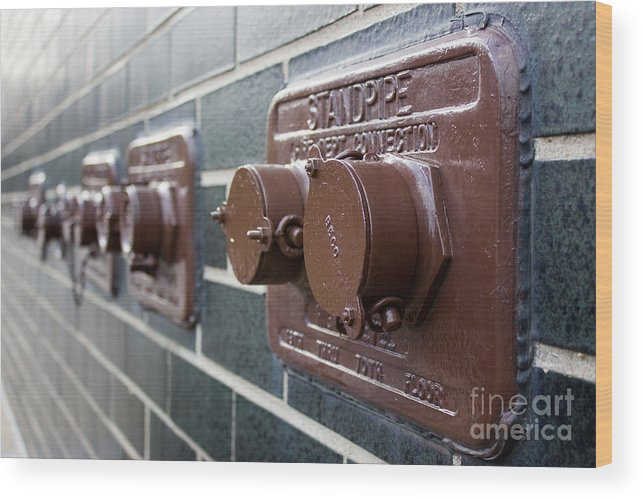 Pipes Wood Print featuring the photograph Brown Pipes by DJ Olbrys