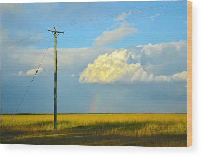 Sugar Cane Wood Print featuring the photograph Bundy Fields by Naturae Sua