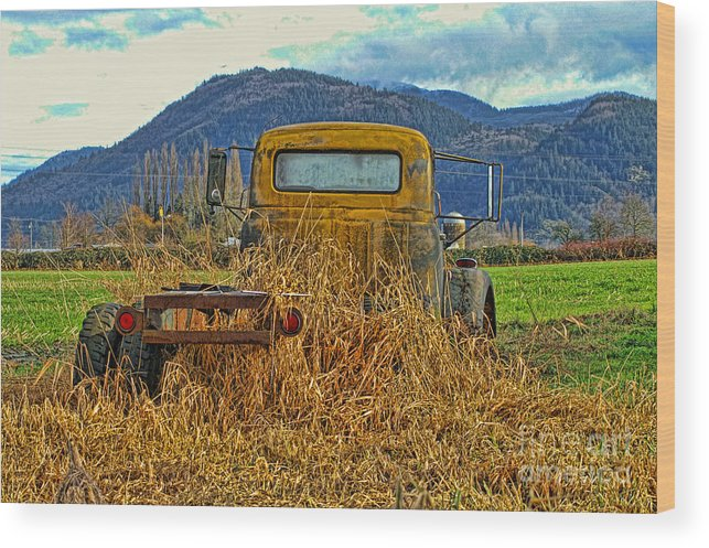 Trucks Wood Print featuring the photograph Caoc2007-08 by Randy Harris