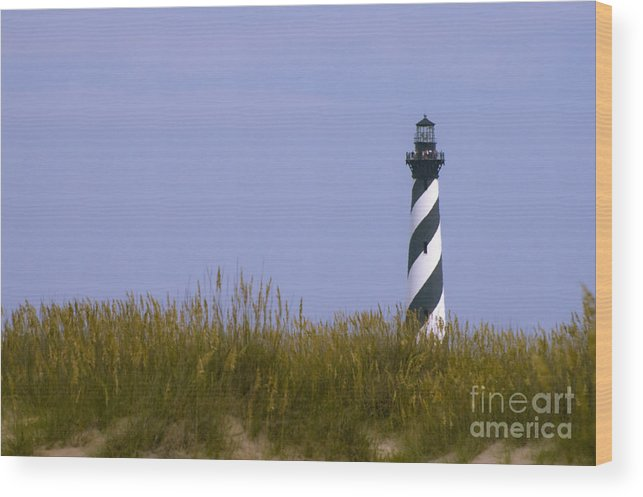 Lighthouse Wood Print featuring the photograph Cape Hatteras Lighthouse And Seagrass by Tim Mulina