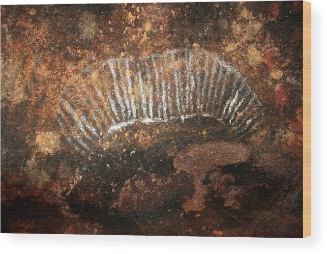 Witchittey Grub Wood Print featuring the photograph Cave Painting Of A Witchittey Grub by Laurel Talabere