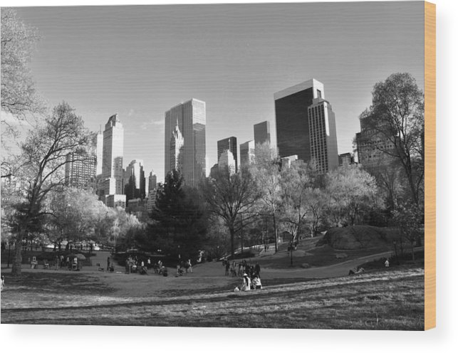 Central Park Wood Print featuring the photograph Central Park 2 by Andrew Dinh