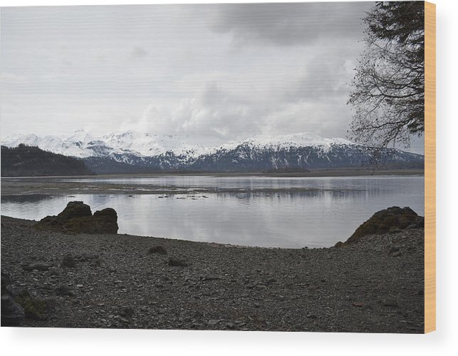 Chinapoot Wood Print featuring the photograph Chinapoot Bay by Jennifer Zirpoli